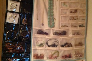 Fancy Pants Jewelry Organizers. The one on the right is from Bed, Bath & Beyond ($20).