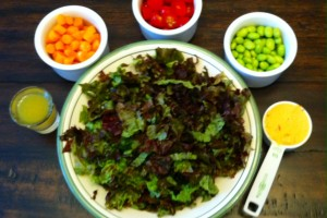 My Splendid Salad Fixings: Greens, more veggies (carrots and tomatoes), 2 lean proteins (edamame, hummus), 2 Tbs. homemade dressing.