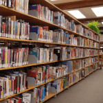 The Library: More Than Just Words on A Page