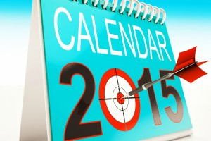 2015 Calendar Target Showing Year Projection Plan