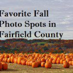 Favorite Fall Photo Spots in Fairfield County