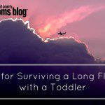 Tips for Surviving a Long Flight with a Toddler