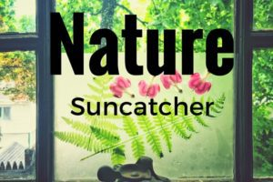 NatureSuncatcher