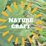 Nature Craft with LuCk