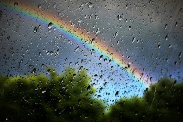 rainbow baby