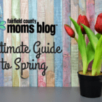 Ultimate Guide to Spring
