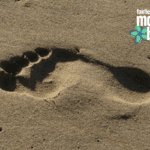 Your Kid's Digital Footprint