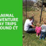 Animal Adventure Day Trips around CT