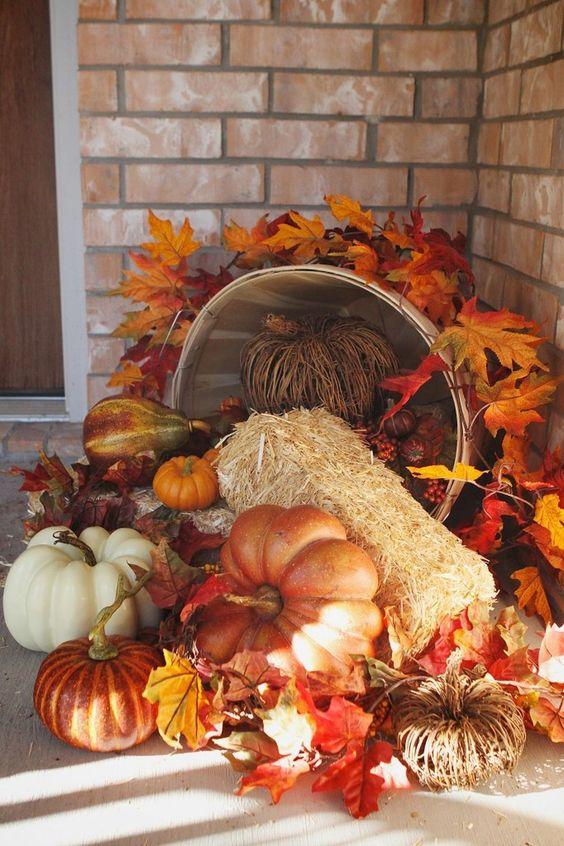 outdoor fall 3