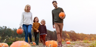 fall family-friendly activities