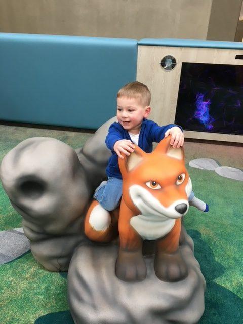 mall fox